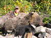 Grizzly Hunts BC
